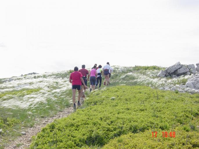 en direction du Mt CARPIAGNE