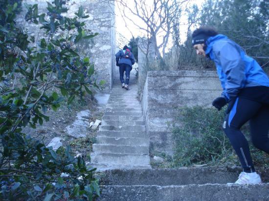 LES FAMEUX ESCALIERS DU Trail des Eaux Vives