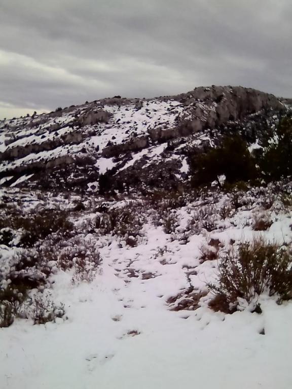 Neige à la Barasse