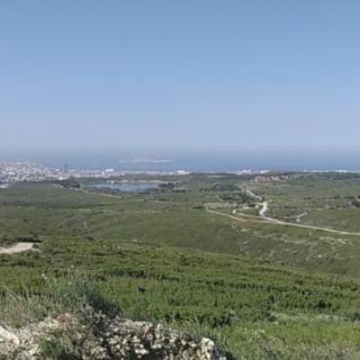 Marseille vue de l'etoile