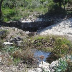 source eaux vives le 11 juin 2008