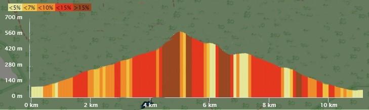 Profil 11 km 2020